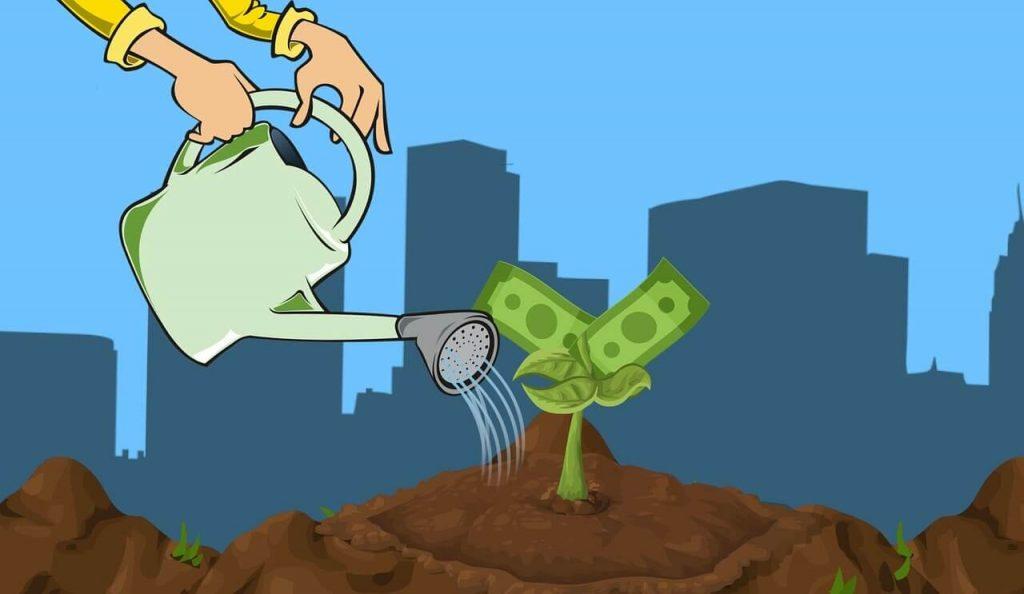 Onde investir com a taxa SELIC caindo