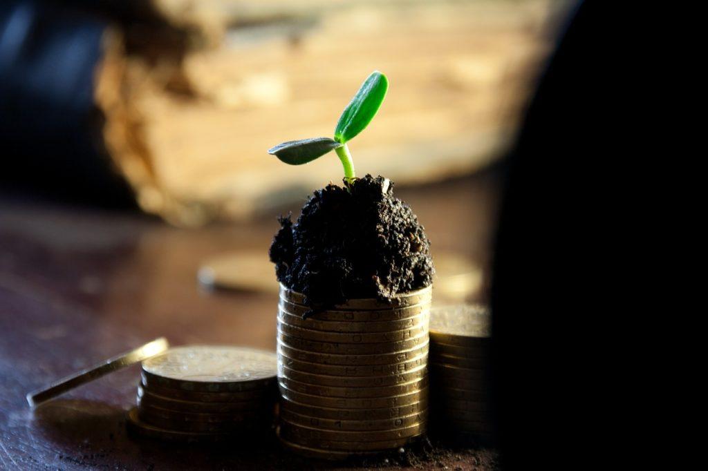 Dividendos e juros sobre capital próprio: o que são e suas diferenças